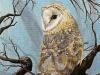 Listening for Clues. Barn Owl, Acrylic