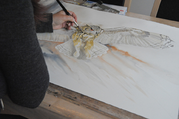 Close up of Mandi painting a Siberian Eagle Owl