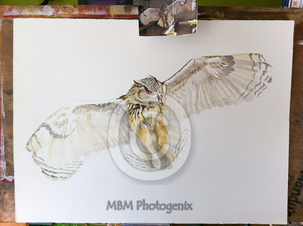 Under Painting of a Siberian Eagle Owl by Mandi Baykaa-Murray