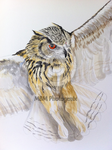 Detail of a painting of a Siberian Eagle Owl by Mandi Baykaa-Murray