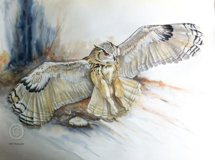 Painting of Siberian Eagle Owl by Mandi Baykaa-Murray