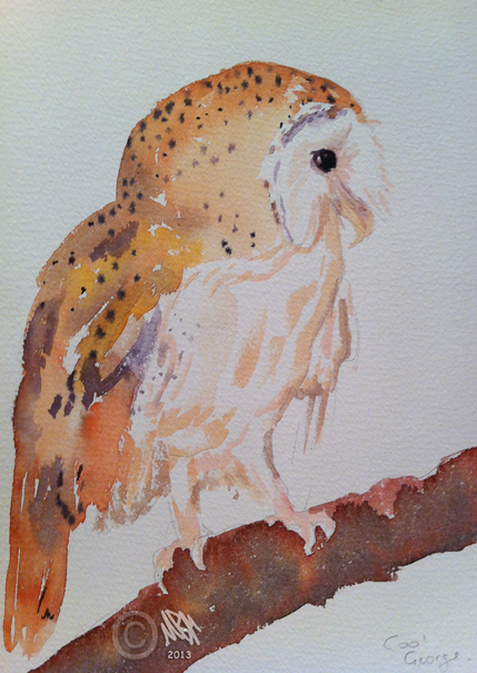 Watercolour study of barn owl using cool colours by Mandi Baykaa-Murray