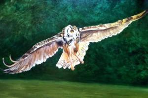 "w.i.p. Eagle Owl, Oil on board, 24"" x 36"" Mandi Baykaa-Murray"