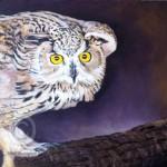 Acrylic painting of a Siberian Eagle Owl by Mandi Baykaa-Murray