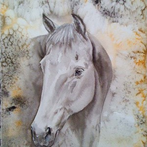 Original Watercolour painting of a beautidul horse by Mandi Baykaa-Murray