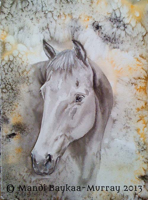 Original Watercolour painting of a beautidul horse by Mandi Baykaa-Murray