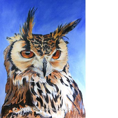 Woolley' Portrait of an Indian Eagle Owl by Mandi Baykaa-Murray