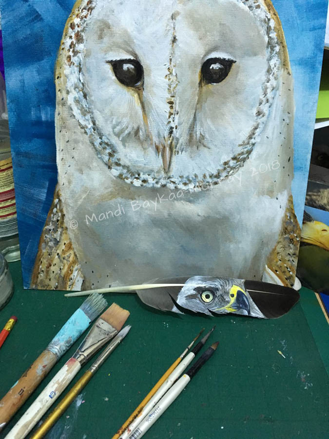 Comparison of Brushes used for big, bold Barn Owl and feather painting.