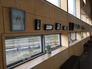 Some of my feather paintings over the view across Slimbridge